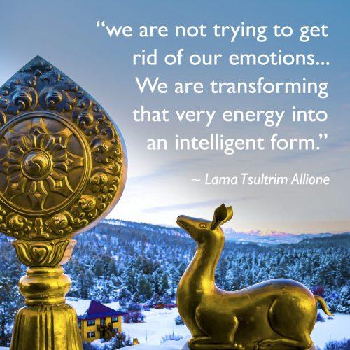 lama_quote_deer_symbol_emotions